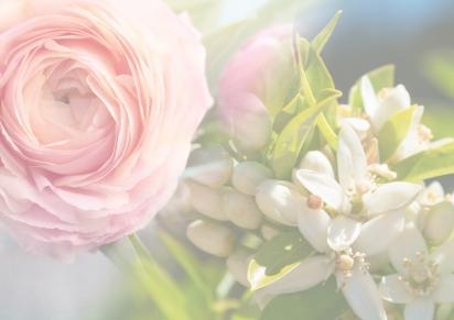 Spring 2017 – May Rose &Neroli