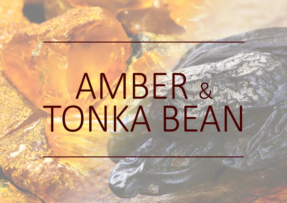 Fragrance trends - Winter 2017 - Amber and tonka