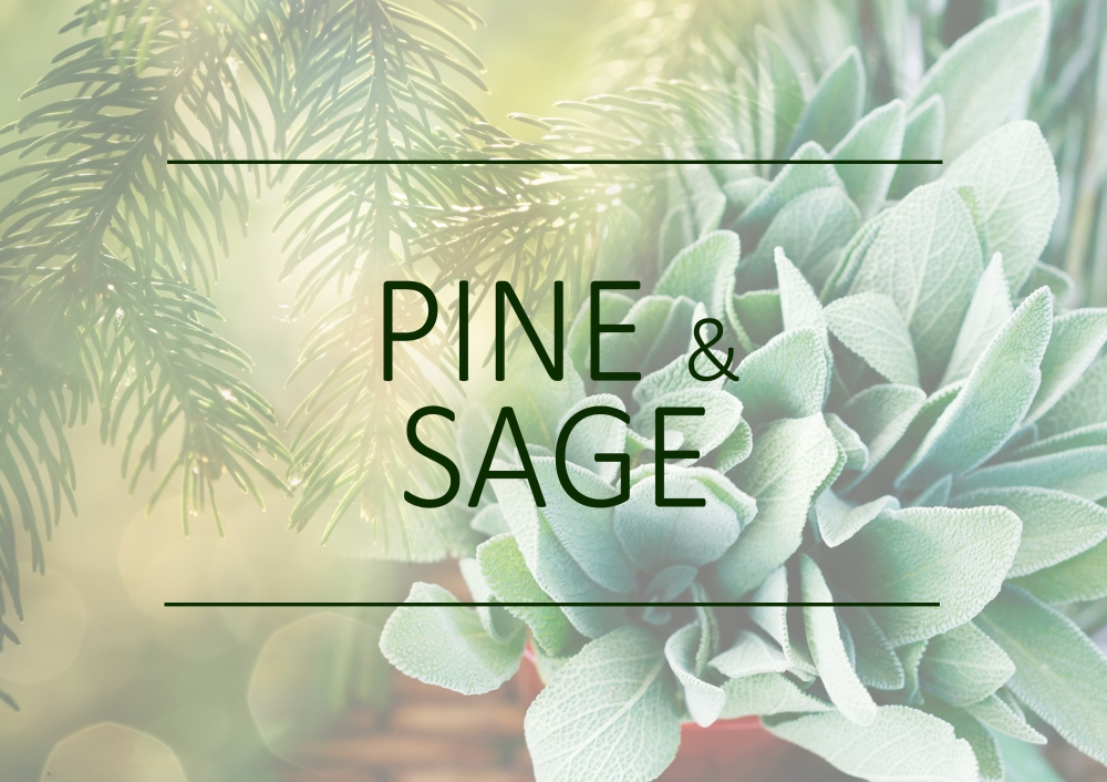 Fragrance trends - Summer 2018 - Pine and sage
