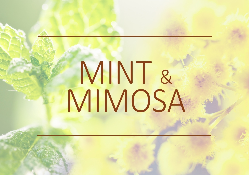 Fragrance trends - Summer 2019 - Mint and mimosa