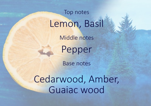 Fragrance trends - Mediterranean lemon and cedarwood pyramid
