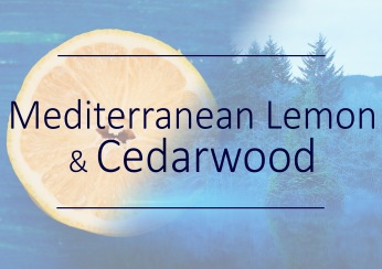 Fragrance trends - Mediterranean lemon and cedarwood