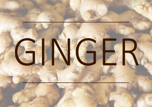 Fragrance trends - Ginger