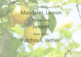 Fragrance trends - Lemon pyramid