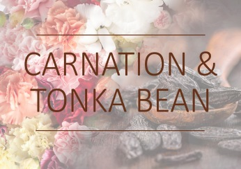 Fragrance trends - Carnation and tonka bean